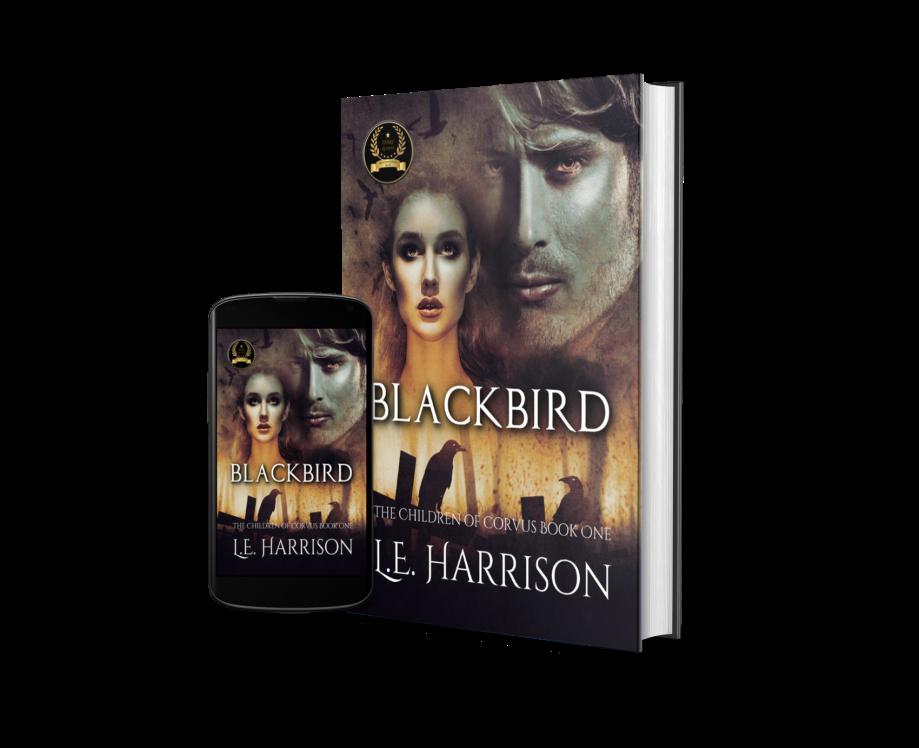Blackbird 2 - Mockup